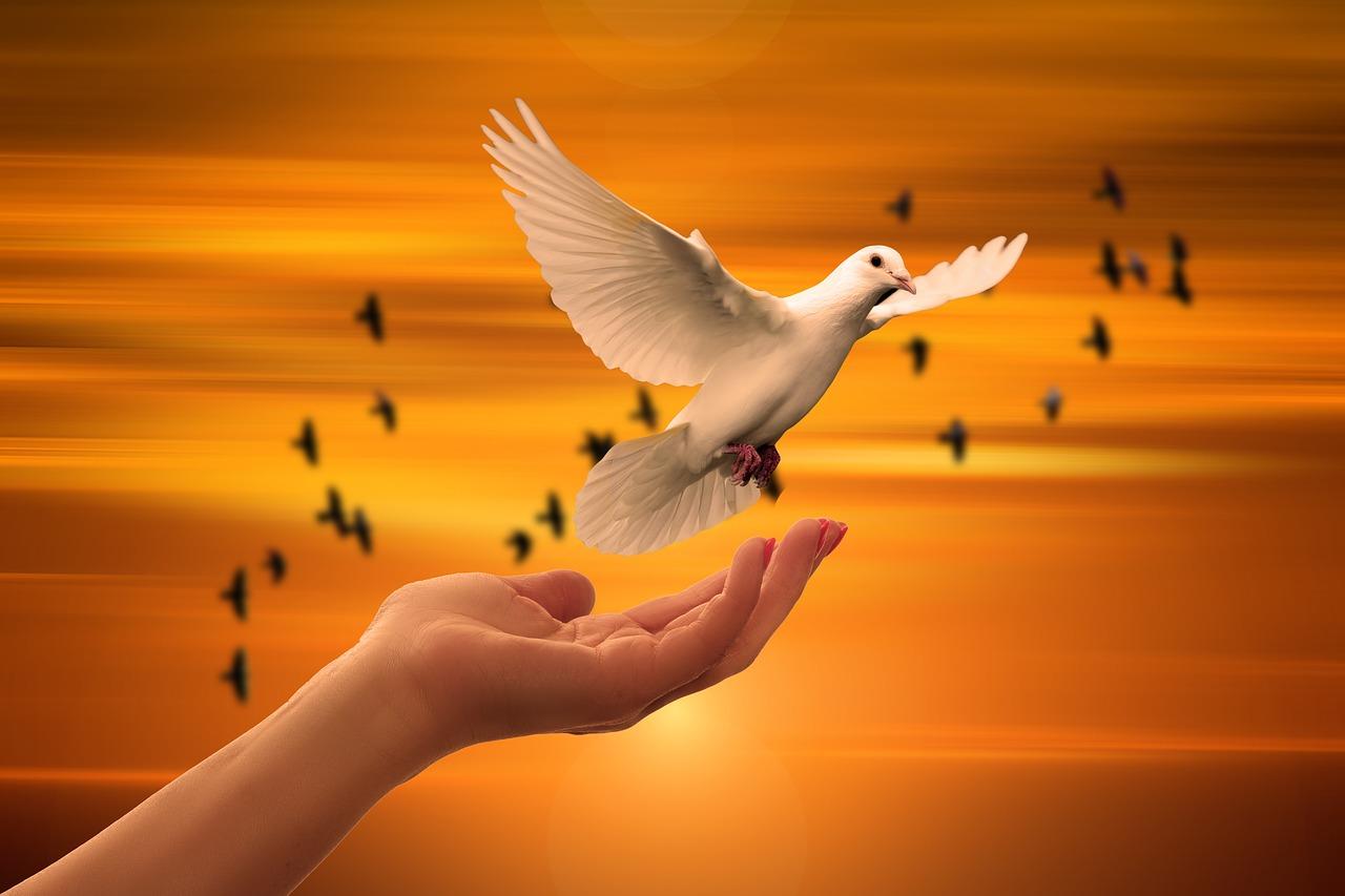 魂の更新と主護神との対話